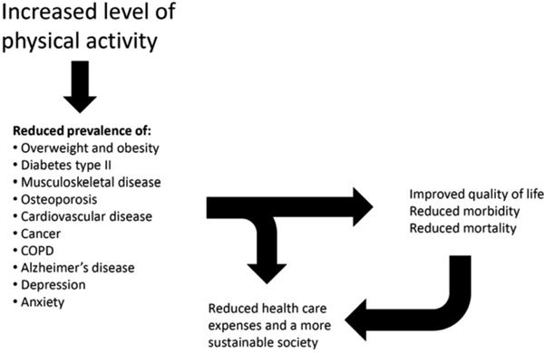 journal of physical activity and health pdf